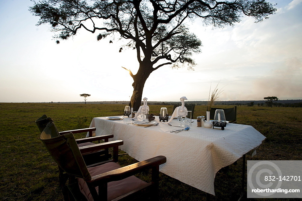 Elegant luxury camp, dinner table, Living under Canvas, Serengeti, Tanzania, Africa