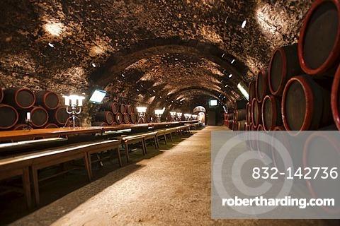 Rakoczi pince, Rakoczi wine cellar, UNESCO World Heritage site, Tokaj region, Hungary, Europe