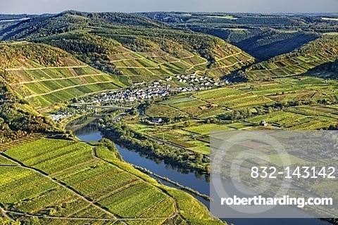 Moselschleife, Moselle loop, Bremm, Rhineland-Palatinate, Germany, Europe