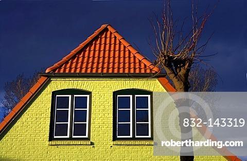 Yellow Hhouse