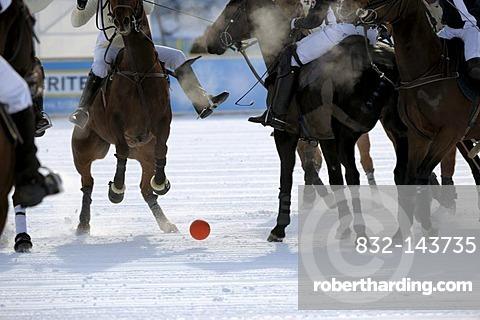 Polospieler kaempfen um den Ball, Poloturnier, 26. St. Moritz Polo World Cup on Snow, St. Moritz, Upper Engadin, Engadin, Grisons, Switzerland, Europe