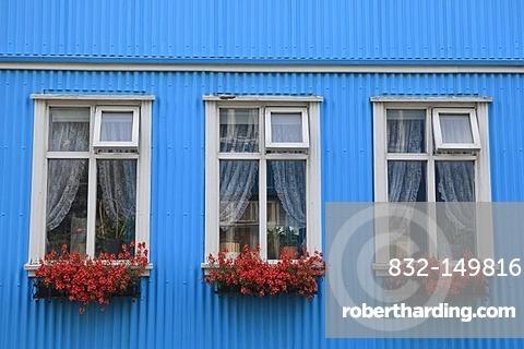 Window boxes with flowers, traditional Icelandic corrugated iron house, Reykjavik, Iceland, Europe