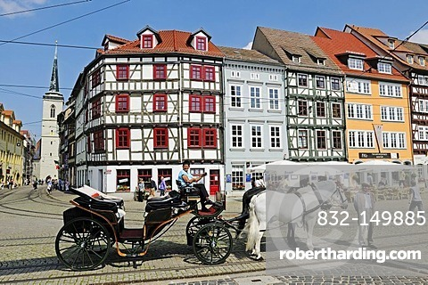 Horse-drawn carriage for tourists, Domplatz cathedral square, Erfurt, Thuringia, Germany, Europe
