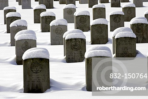 Headstones at Durnbach War Cemetry 1939 - 1945, winter, snow, Upper Bavaria, Germany, Europa