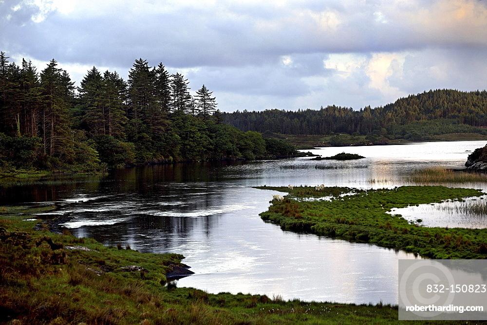 Connemara landscape, County Galway, Republic of Ireland, Europe