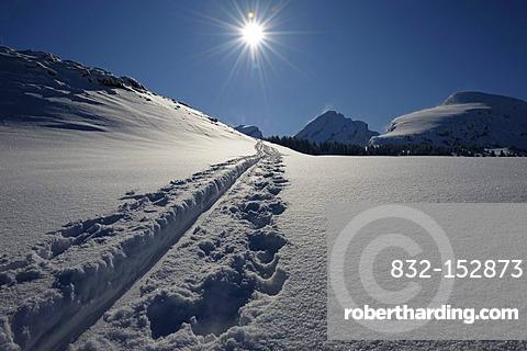 Ski tracks and mountain peaks, backlit, Wildhaus, Appenzell district, Canton of St. Gallen, Switzerland, Europe