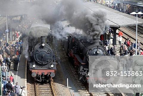 Dampfspektakel 2010 steam train show at Gerolstein station, passenger train engine 2455 Posen, left, with freight train engine 58311, right, Gerolstein, Rhineland-Palatinate, Germany, Europe