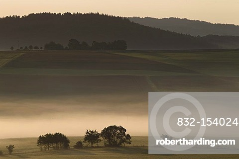 Morning fog in the Eifel mountain range near Nuerburg, Rhineland-Palatinate, Germany, Europe