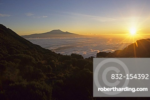 Kilimanjaro at sunrise, seen from Saddle Hut at Mount Meru, Tanzania, Africa