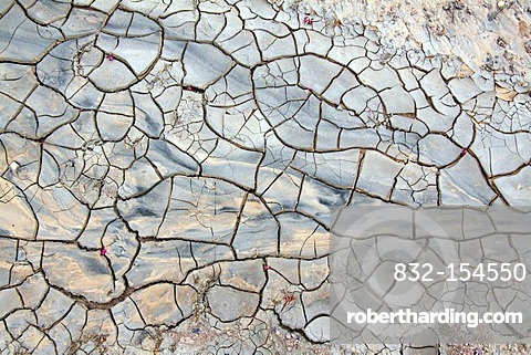 Desiccation cracks in a riverbed in the desert, Wadi in the Dana Nature Reserve near Feynan, Hashemite Kingdom of Jordan, Middle East, Asia