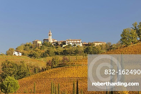 Autumnal vineyards and village of Casali Gallo, Friuli, Italy, Europe