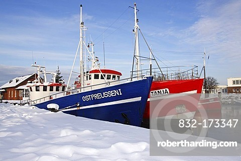 Fishing boats for deep water fishing in the harbour of Heiligenhafen in winter on the Baltic Sea coast, Kreis Ostholstein district, Schleswig-Holstein, Germany, Europe