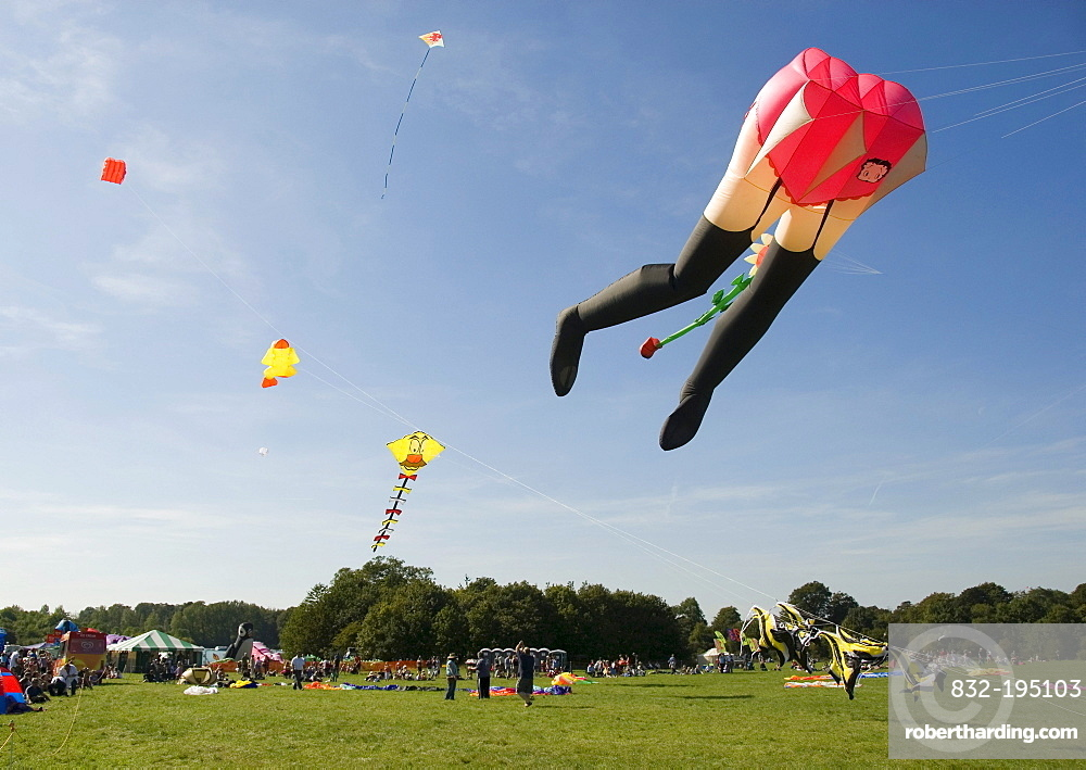 Sexy lower abdomen, kite, character, International Kite Festival, Bristol, England, United Kingdom, Europe