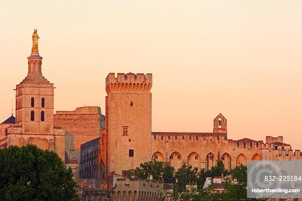 Papal Palace, Palais des Papes, and Notre Dame des Doms Cathedral, Avignon, Vaucluse, Provence-Alpes-Cote d'Azur, Rhone valley, Provence, France, Europe