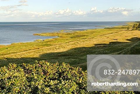 Beach near Als at the Kattegat, Jutland, Denmark, Europe