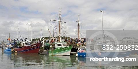 Fishing harbour of La Trinite sur Mer, Morbihan, Brittany, France, Europe
