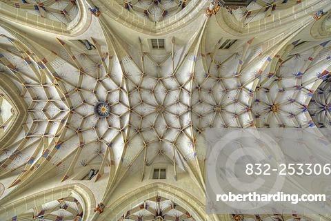Interior view of reticulated or stellar vaulting on nave, Alexander Church, Alexanderkirche, Marbach am Neckar, Baden-Wuerttemberg, Germany, Europe