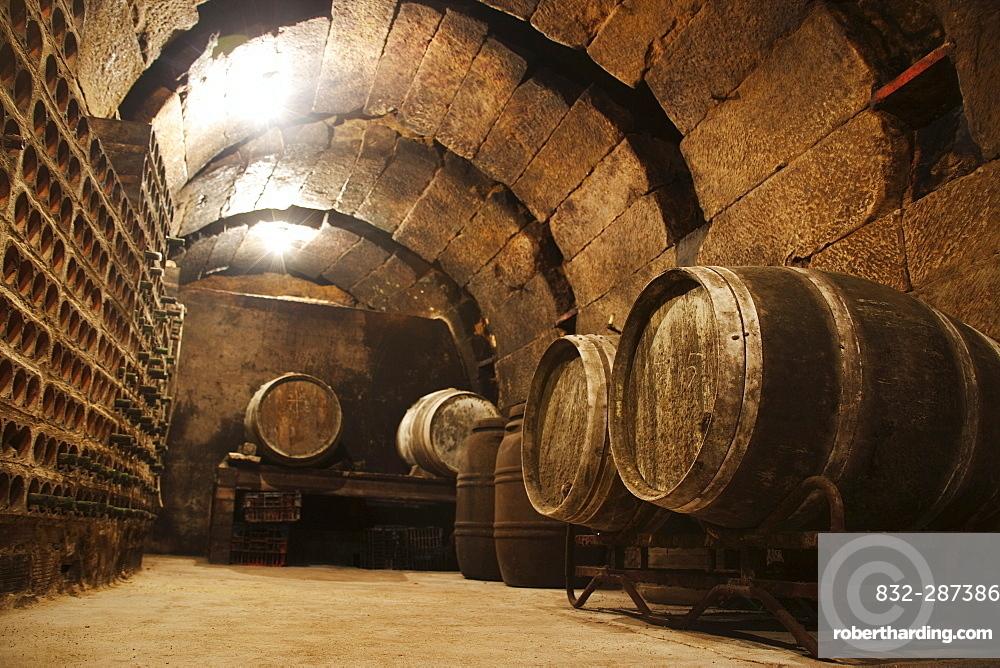 Wine barrels in a wine cellar, La Rioja, Spain