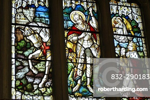 Church window, St. Andrew's Cathedral, Gothic cathedral, Wells, Mendip, Somerset, England, Great Britain, Europe