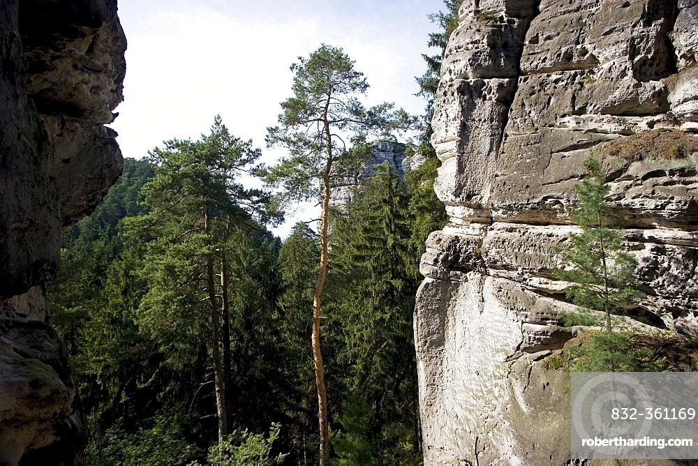 Sandstone rock, Boehmisches Paradies, Cesky Ray, Czech Republic