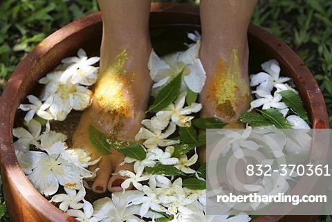 LKA, Sri Lanka : Siddhalepa Ayurveda Resort, Food massage, oiling, herb bath fot feet.