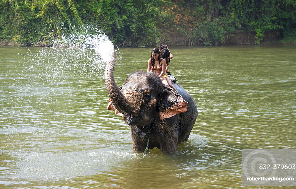 Elephant spraying tourists, Kanchanaburi Province, Central Thailand, Thailand, Asia
