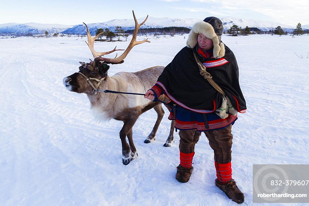 Man in traditional Sami dress, with a reindeer, Villmarkssenter, near Tromso, Norway, Europe