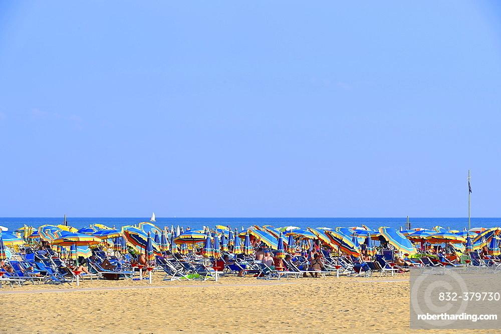 Sandy beach, sea, sun loungers and parasols, Bibione, Veneto, Italy, Europe