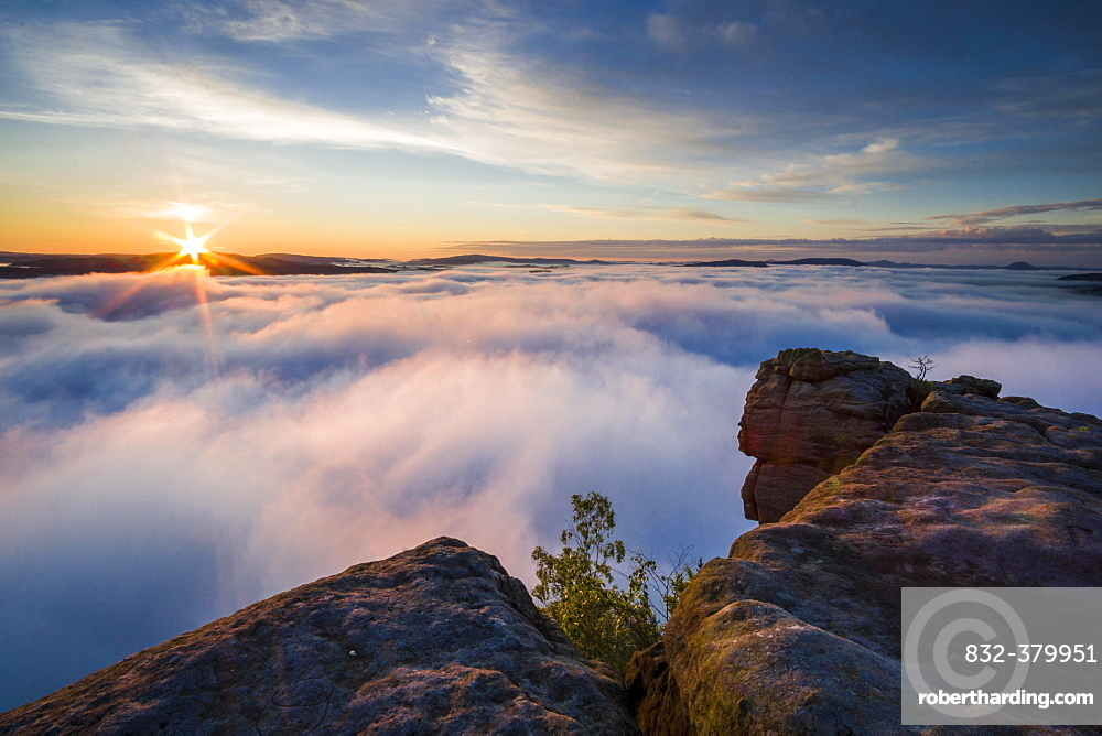 Thick fog is filling the valley of the river Elbe in Elbsandsteingebirge, seen from Lilienstein at sunrise, Konigstein, Saxony, Germany, Europe