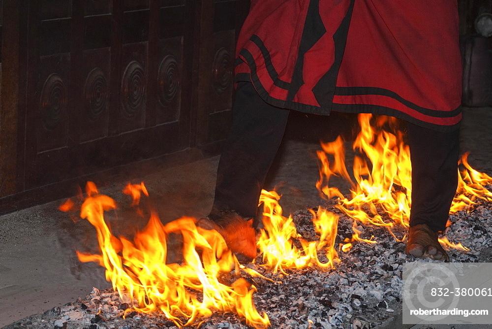 Firewalking, man running barefoot on hot coals, Kandy, Central Province, Sri Lanka, Asia