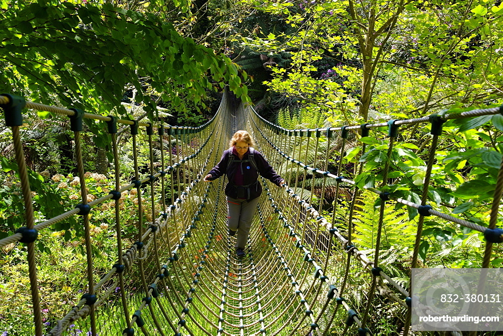 Woman on Burma suspension bridge in the Jungle, The Lost Gardens of Heligan, near St Austell, Cornwall, England, United Kingdom, Europe