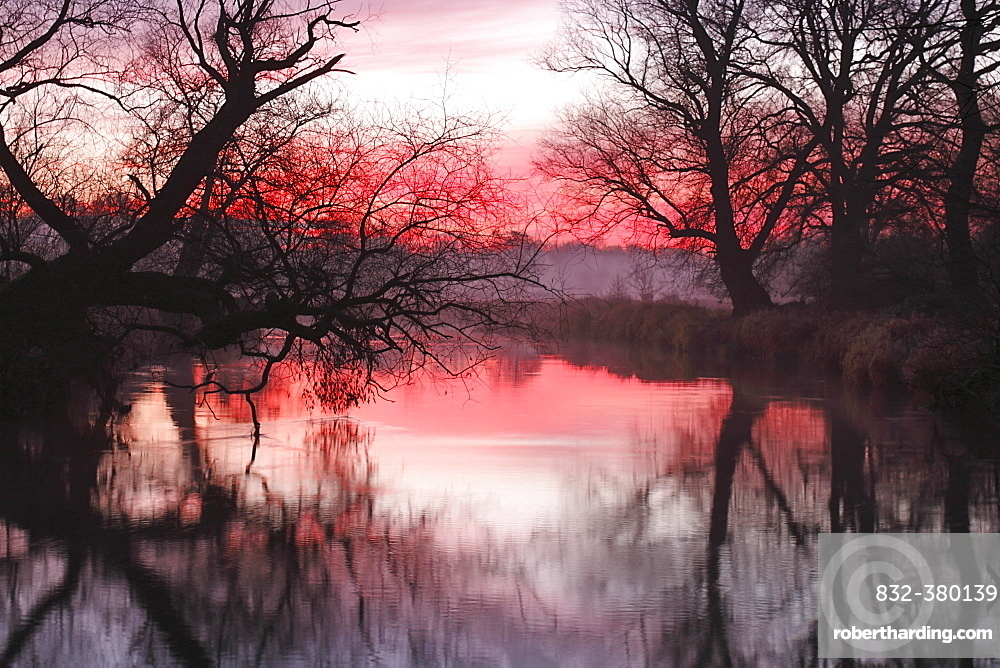 Early morning at sunrise, in the floodplain, Middle Elbe Biosphere Reserve, Saxony-Anhalt, Germany, Europe
