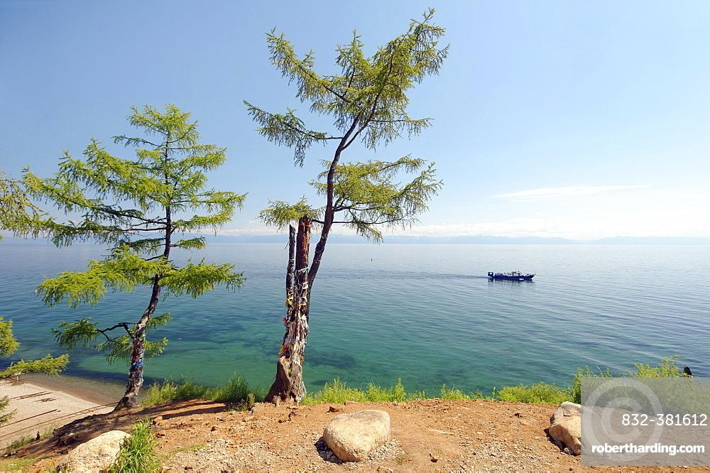 Tree of desires, settlement of Listvyanka, Baikal, Irkutsk region, Siberia, Russian Federation, Eurasia