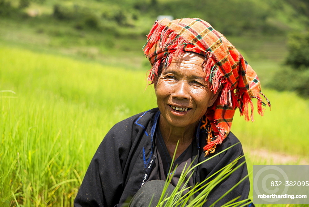 Smiling woman working in the fields, from the Pao hill tribe or mountain people, Shan State, Myanmar, Asia