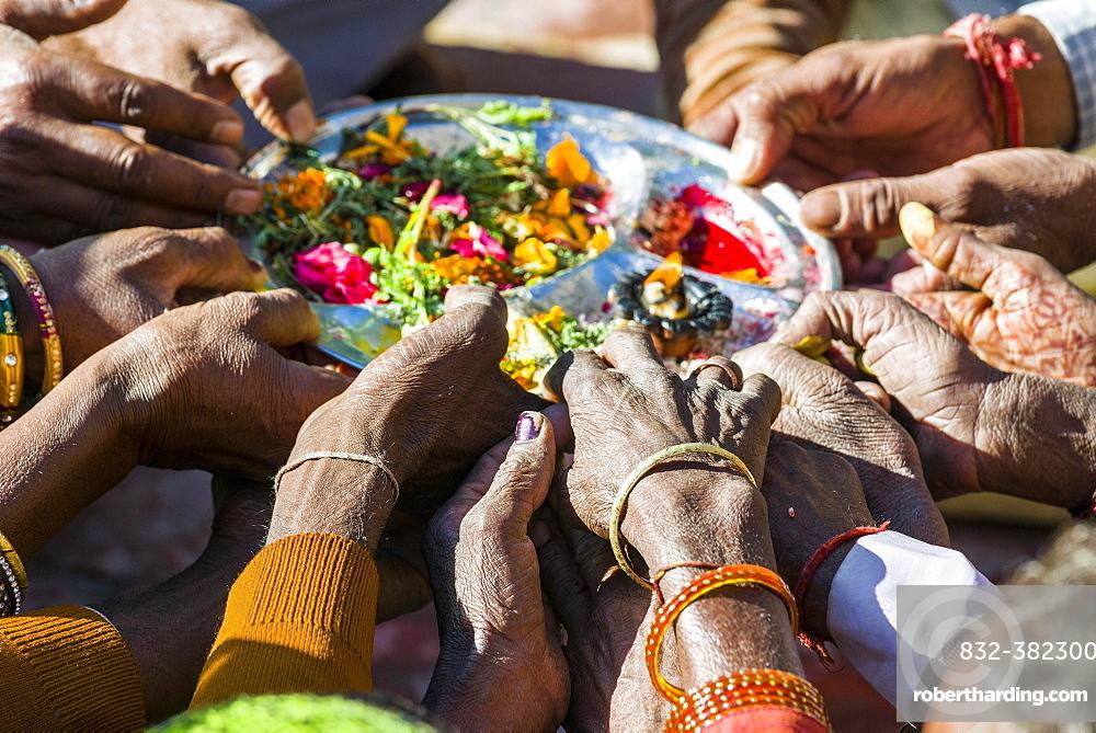 Many hands are holding a plate, pilgrims performing Ganga Pooja, a religious ceremony, Gangotri, Uttarakhand, India, Asia