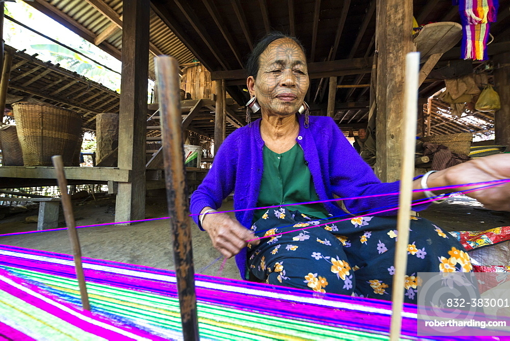 Woman with traditional facial tattoos and ear jewellery from the Chin people, ethnic group, the last of their kind, weaving on a loom, Rakhine State, Myanmar, Asia