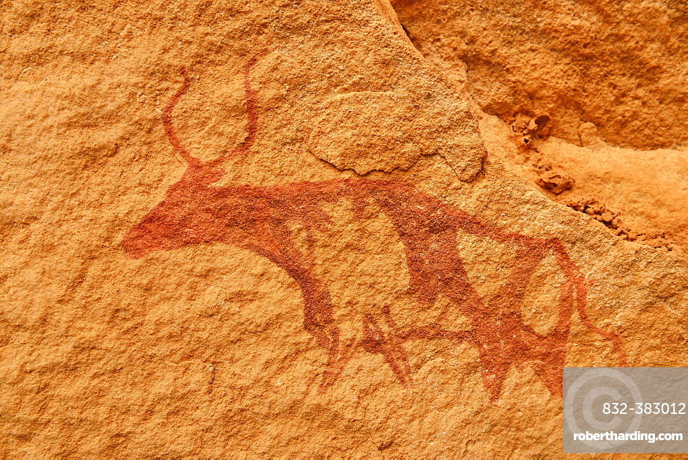 Neolithic rock art, rock painting of a cow or bull, Bovidian period, Tassili n'Ajjer National Park, Unesco World Heritage Site, Algeria, Africa