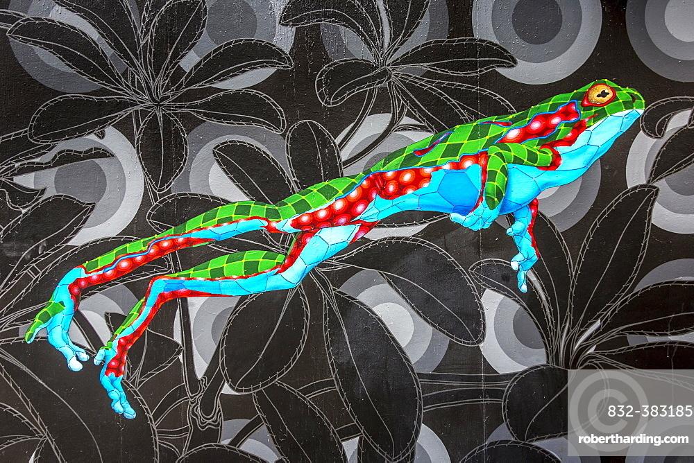 Graffiti on a house wall, Haight-Ashbury, San Francisco, California, United States, North America
