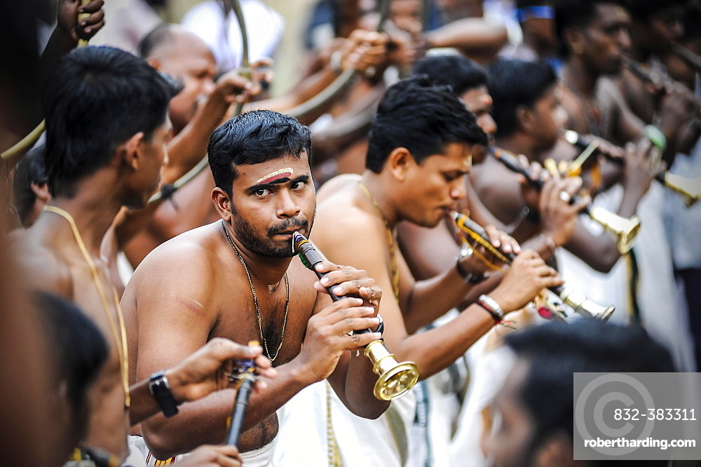 Musicians with trumpets at Hindu temple festival, Thrissur, Kerala, South India, India, Asia