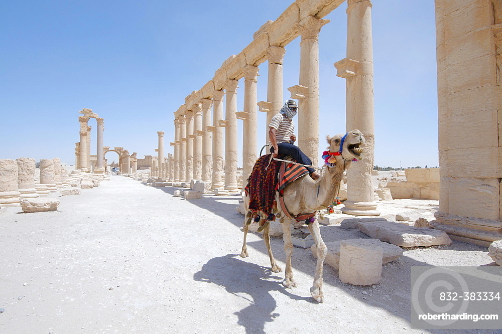 The ruins of the ancient city of Palmyra, Tadmur, Palmyra District, Homs Governorate, Syria, Asia