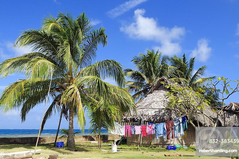 Hut under palm trees, village of the Kuna people, Nalunega, San Blas Islands, Panama, Caribbean, Central America