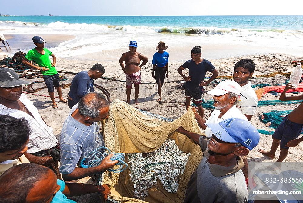 Fishermen, day labourers, examining a meagre catch in a net on the beach, near Kottegoda, Southern Province, Sri Lanka, Asia