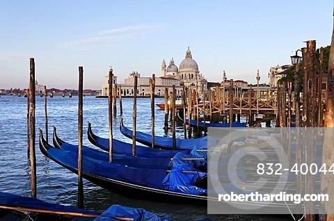 Gondolas, Punta del Dogana, San Marco district, Venice, UNESCO World Heritage Site, Venetia, Italy, Europe