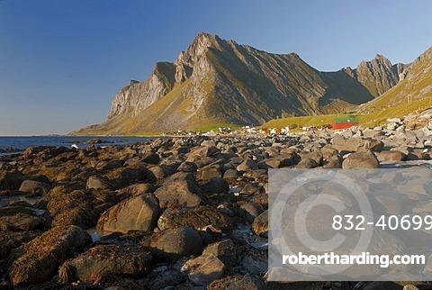 Mountains behind rocks on the beach of the Norwegian Sea, Vikten, Fredvang, island of Flakstadoya, Flakstadoya, Lofoten archipelago, Nordland, Norway, Europe