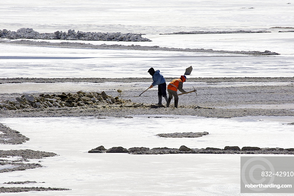 Salt workers in a salt lake, Altiplano, Potosi, southern Bolivia, South America