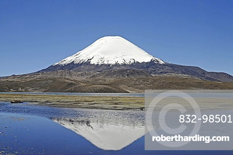 Parinacota Volcano, reflection in Lake Chungara, Lauca National Park, Altiplano, Norte Grande, Northern Chile, Chile, South America