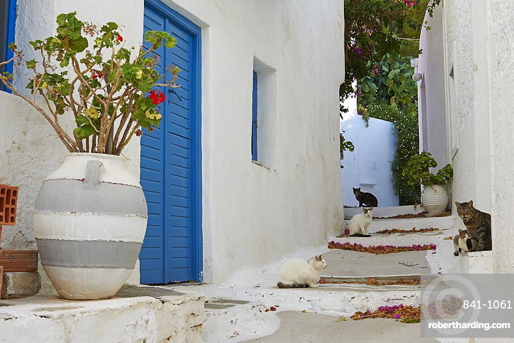 Hora, Serifos Island, Cyclades, Greek Islands, Greece, Europe