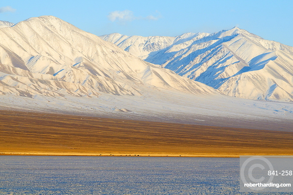 Winter landscape in Biosphere reserve with snow covered mountains, Lake Khar Us Nuur, Province of Khovd, Mongolia, Central Asia, Asia
