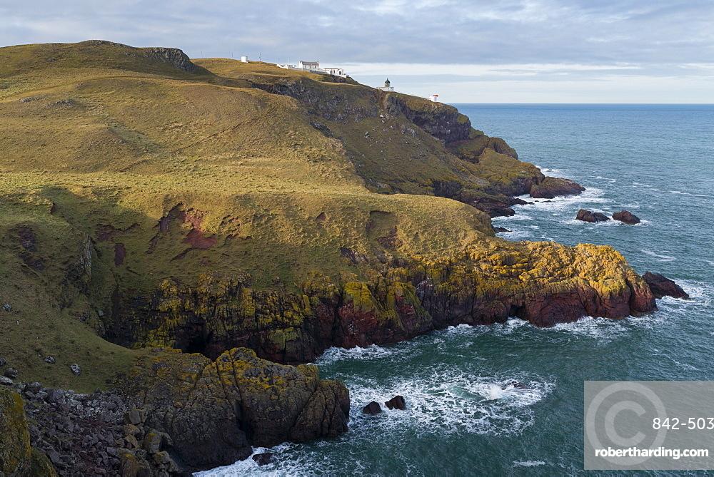The coastline at St. Abb's Head Nature Reserve, Berwickshire, Scotland, United Kingdom, Europe