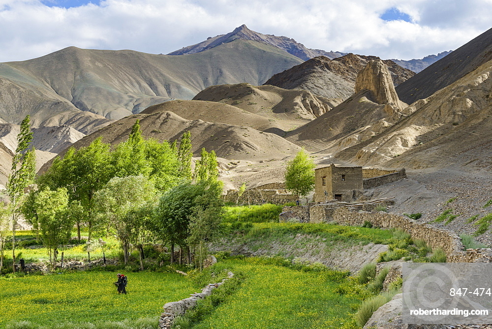 Woman and child working in the fields at the base of the mountains of Moonland, Lamayuru, Ladakh, Himalayas, India, Asia